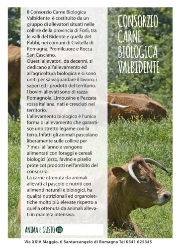 Consorzio carne biologica